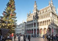 flandrija_bruselj